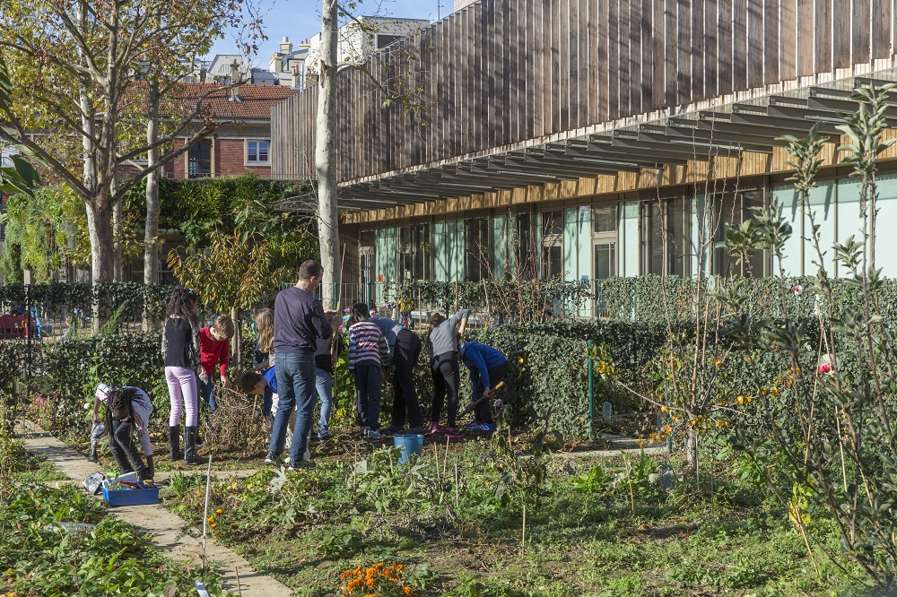 Jardin Potager Ecole Saida - Marc VERHILLE Mairie de Paris