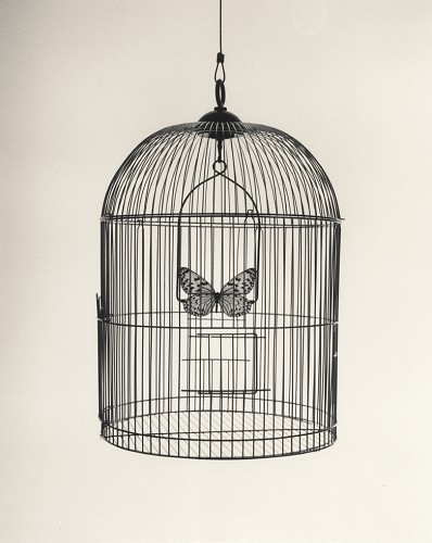 Chema Madoz - papillon cage - exposition Galerie Esther Woerdehoff - Paris 15