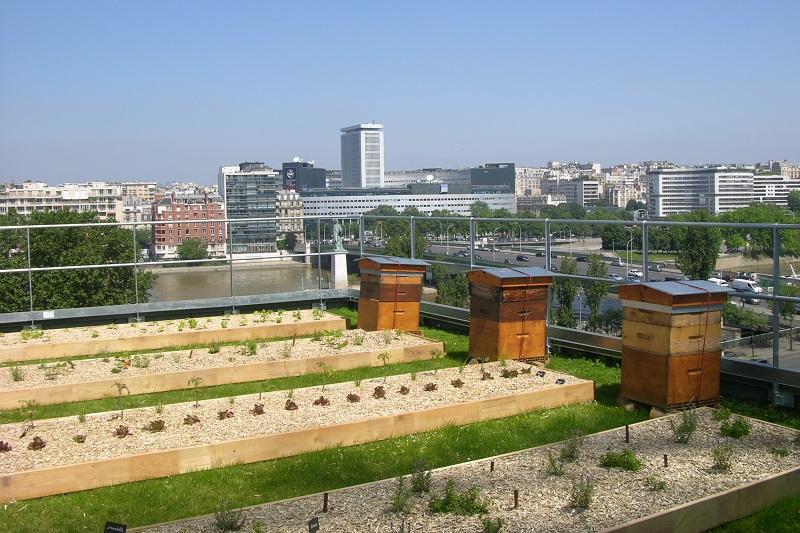 Campus Cordon Bleu - jardin sur le toit - Front de Seine - paris 15