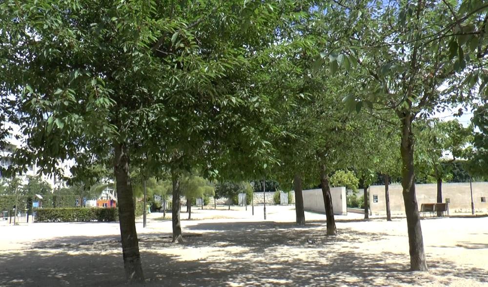 Jardin Blanc - Balard - Paris 15
