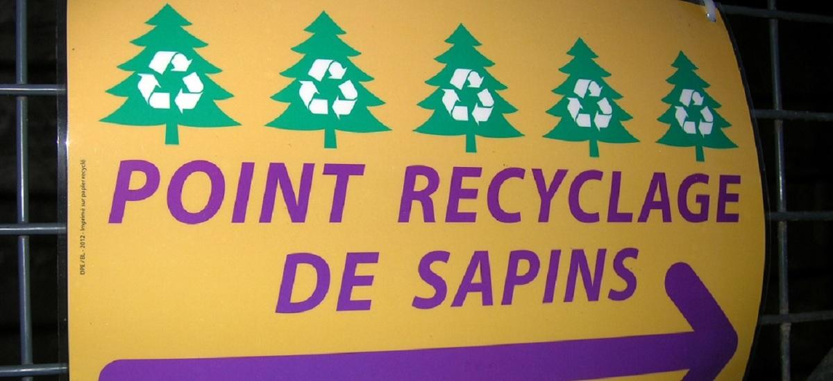 recyclage sapin noël fêtes - paris 15 eme arrondissement