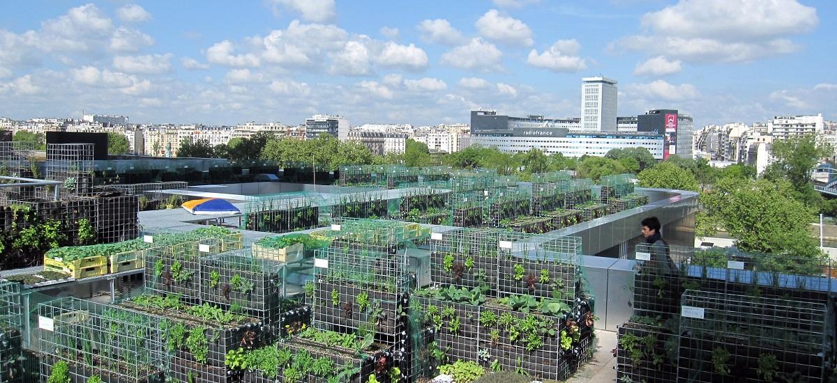 potager urbain - peas & love - toit terrasse hôtel Yooma - Paris 15ème arrondissement (c) Valgirardin